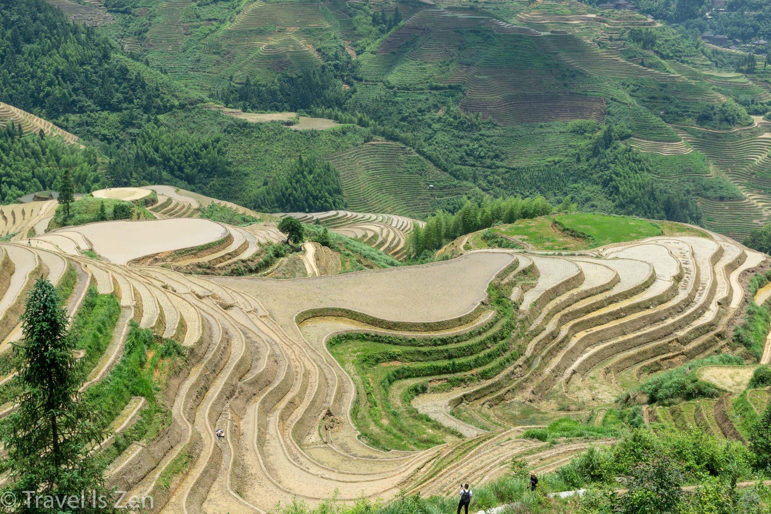 Longji Rice Terrace-15.jpg