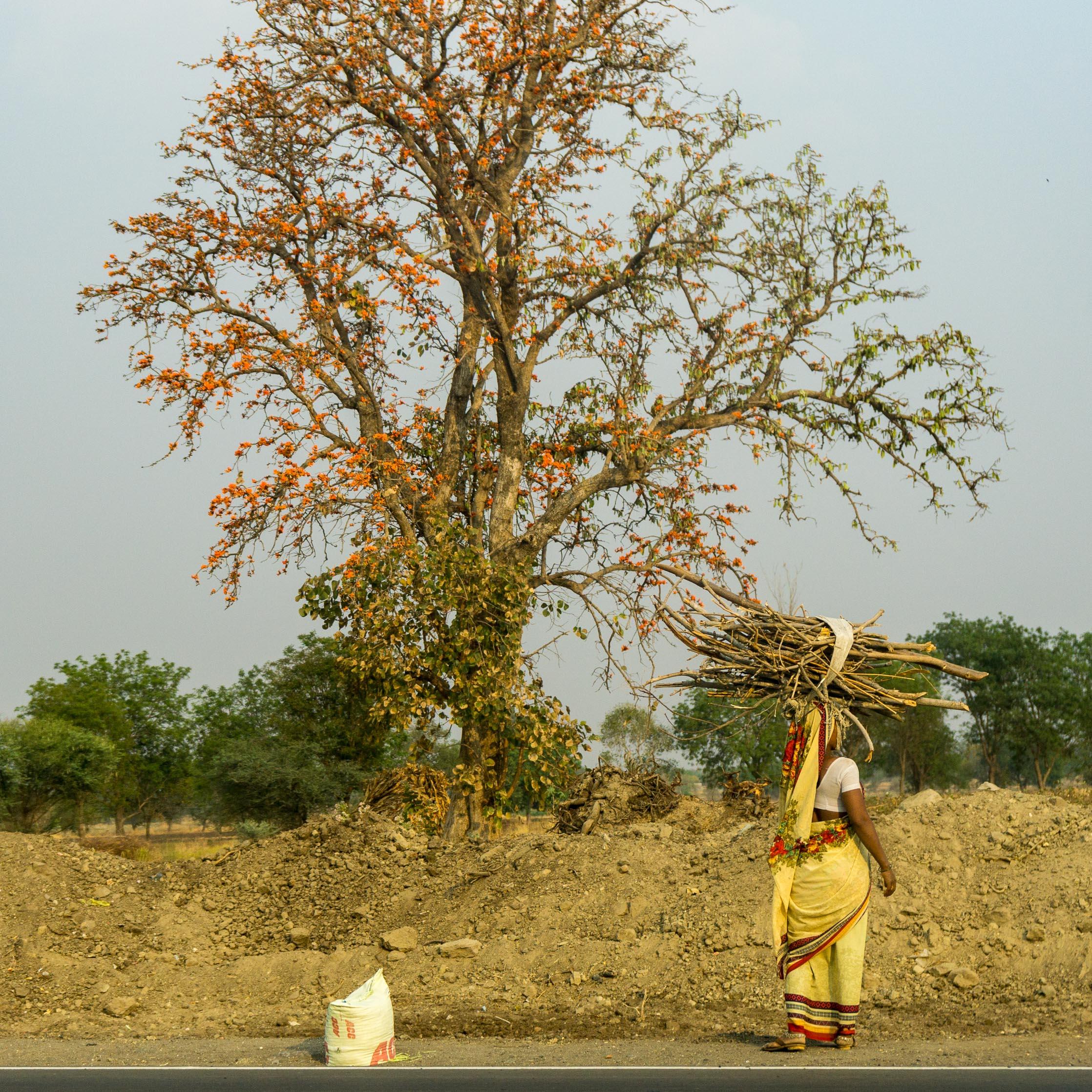India - Mumbai, Aurangabad, Jaipur, Agra