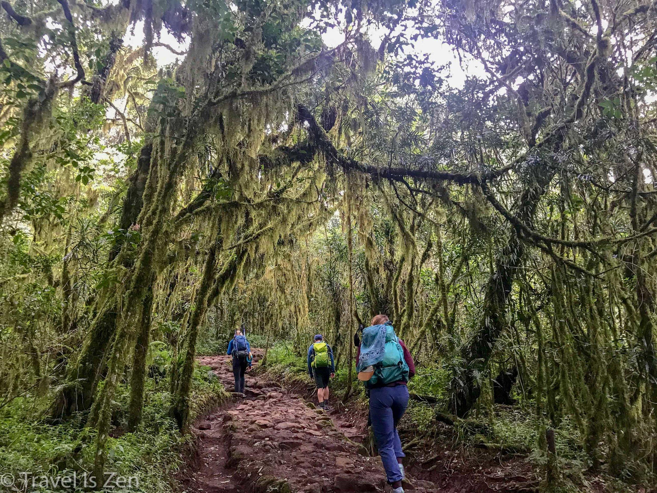 jungle to Mandara Hut