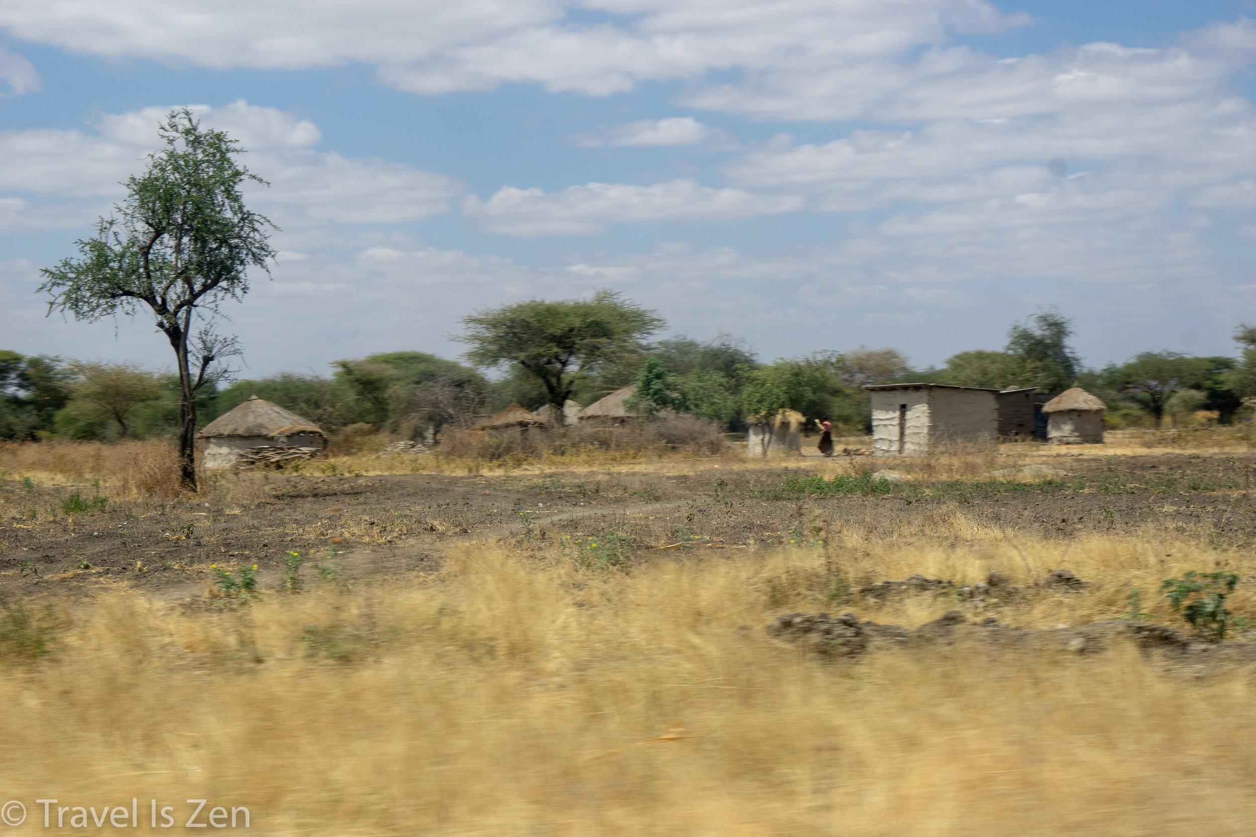 road to safari-6.jpg