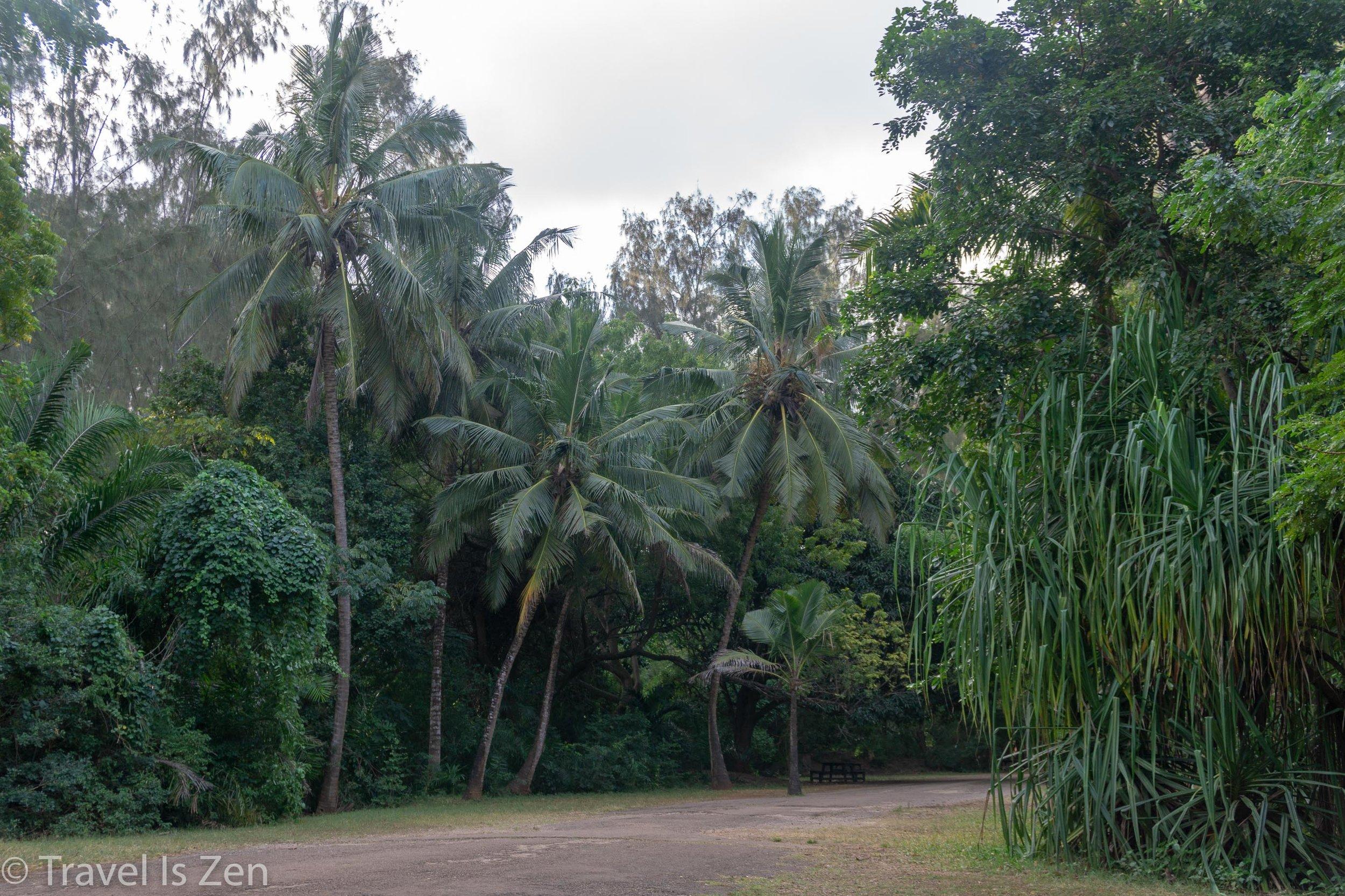 Kenya-47.jpg