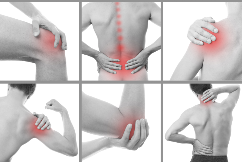 Treatment for.... - Having vast experience treating a wide range of neuromuscular, orthopaedic, neurological, longstanding unresolved pain and sports injury conditions, Karen will work with you to tailor a program specific to your needs.Neck Pain - Low Back Pain - Shoulder - Elbow - Hand Injuries - Hip/Groin Injuries - Knee - Ankle - Foot - Sciatica - Whiplash - Headaches - TMJ Jaw Pain Strains/Sprains - Sports Injury