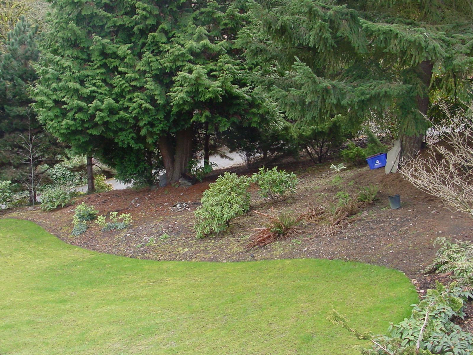 1guthrie garden house1 before.jpg