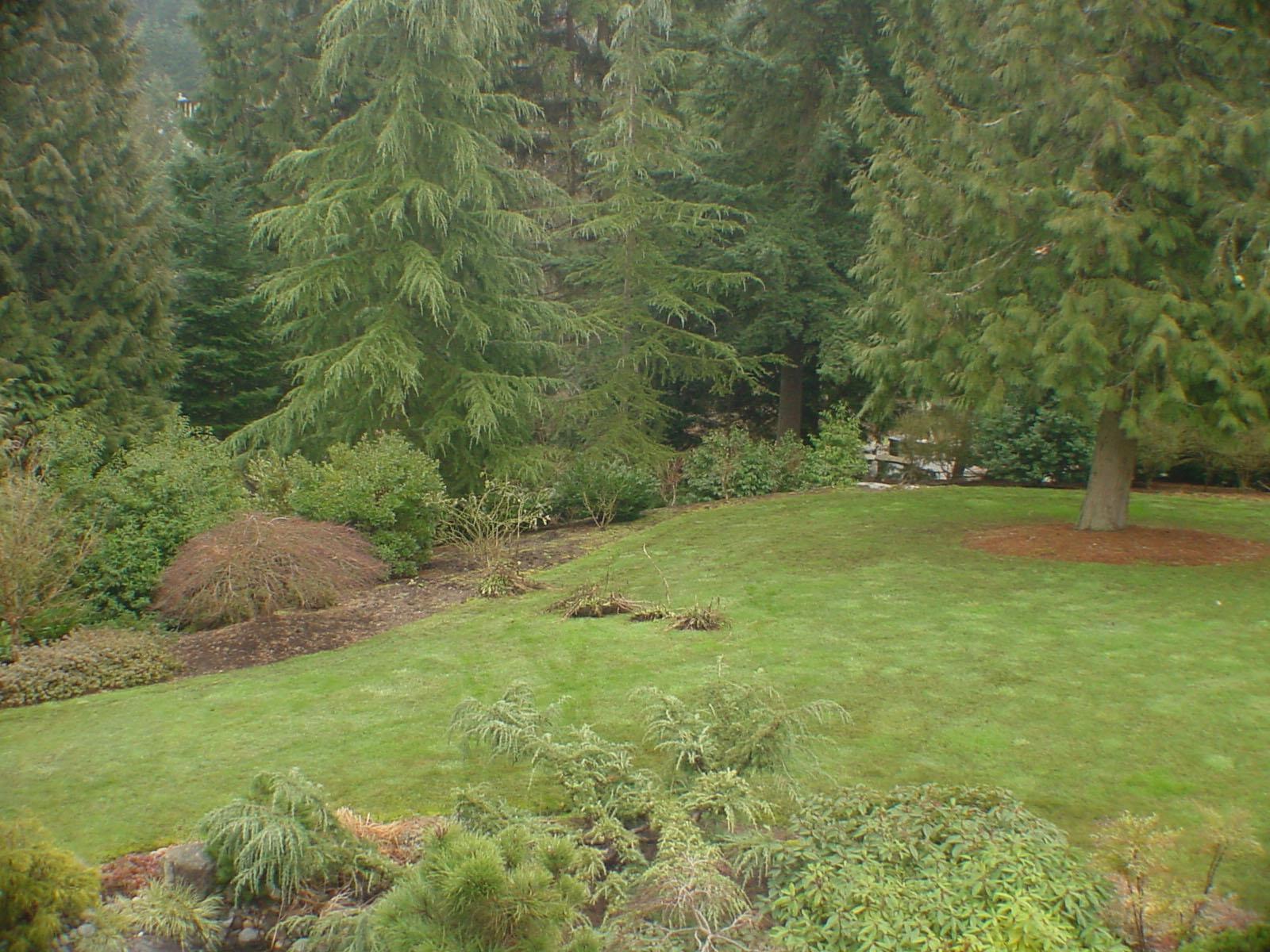 19guthrie planting 2 before.jpg