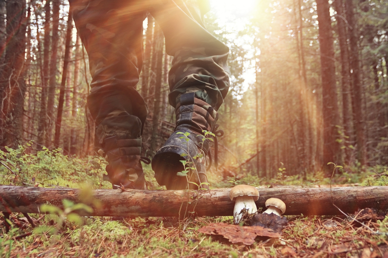 The Best Hunting Boots - From synthetic  to leather, high-end to the best budget choice.