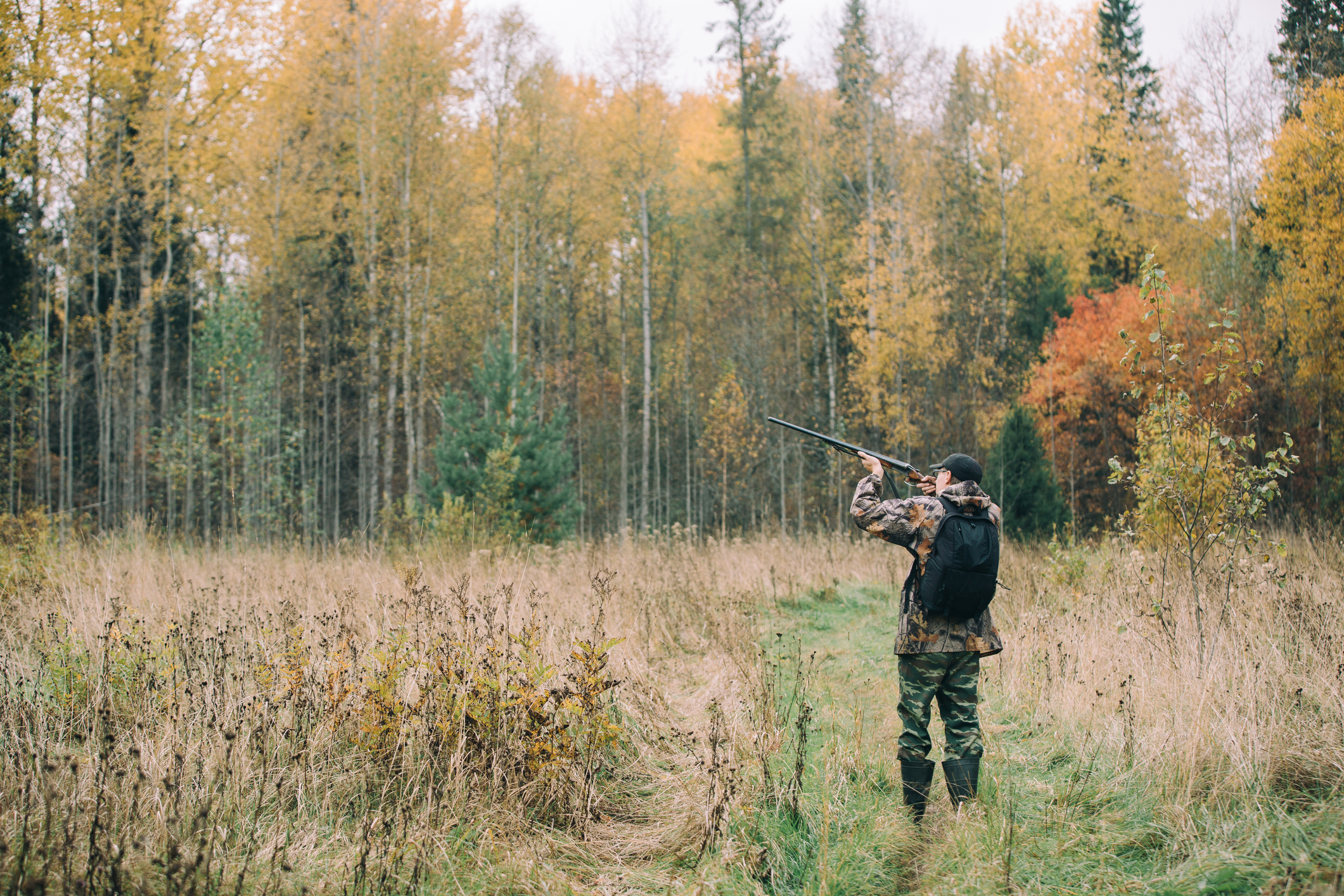 The Best Hunting Day Packs - Being in the field - even for the day -requires comfort, durability and reliable performance. Here's where to start.