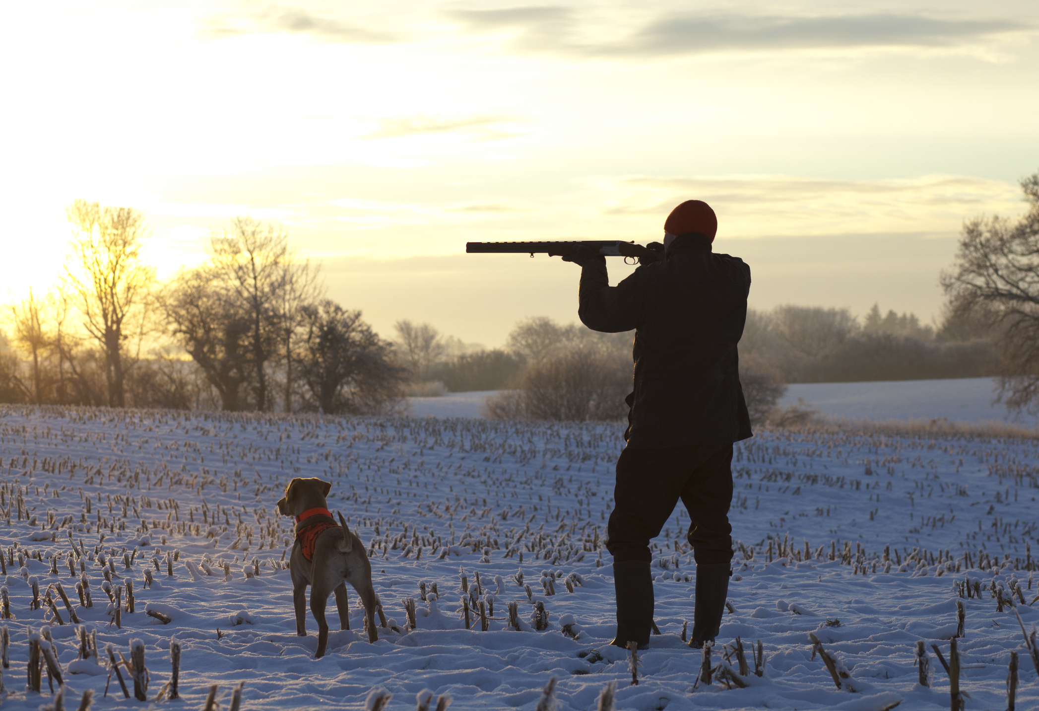 The Best Base Layers for Cold Weather Hunting - Staying warm doesn't have to be a chore: with the right base layer, you can move freely without feeling bogged down by weight.