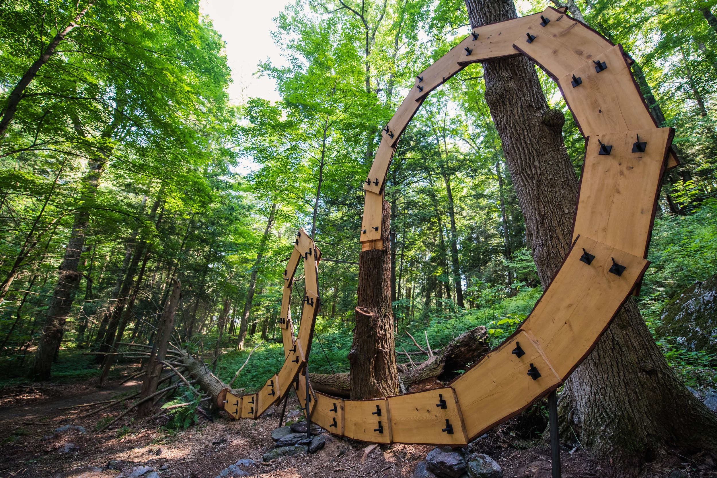 chesterwoodsculpture-1036.jpg