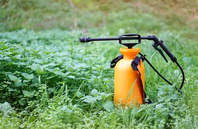 csm_1800X_Guide_Maison_en_sante_Pesticides_75b34c5258.jpg