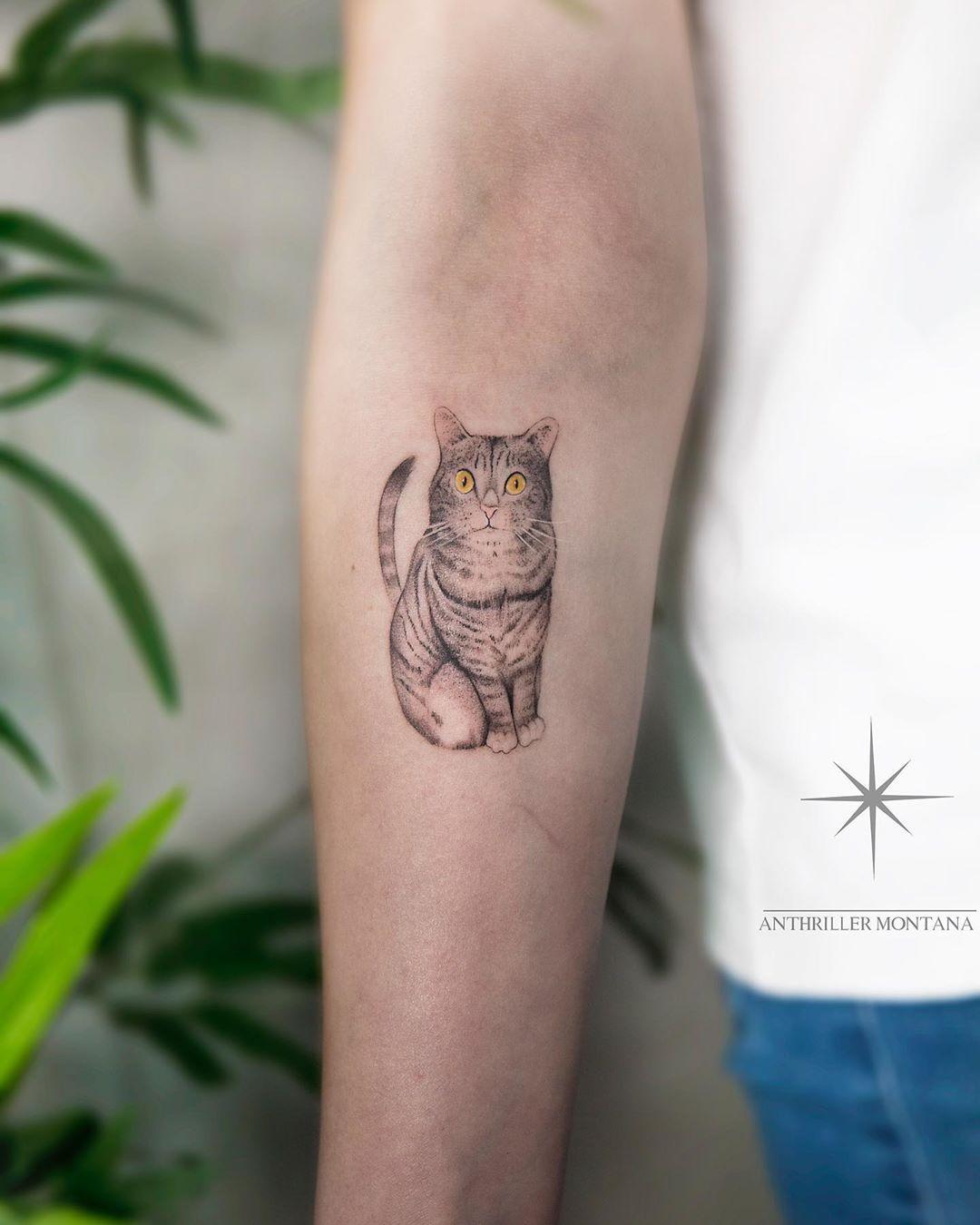 Fineline cat tattoo by Anthriller Montana