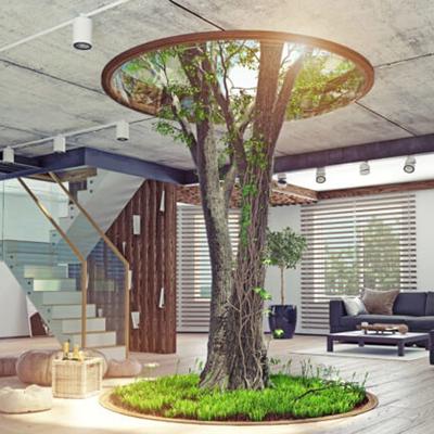 Tree In House.jpg