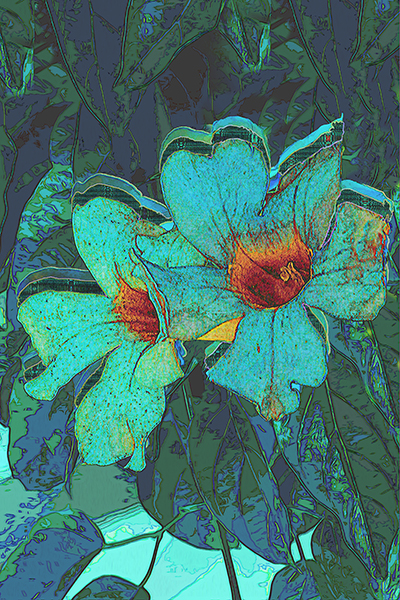 walk flowers color overlay 3jpg