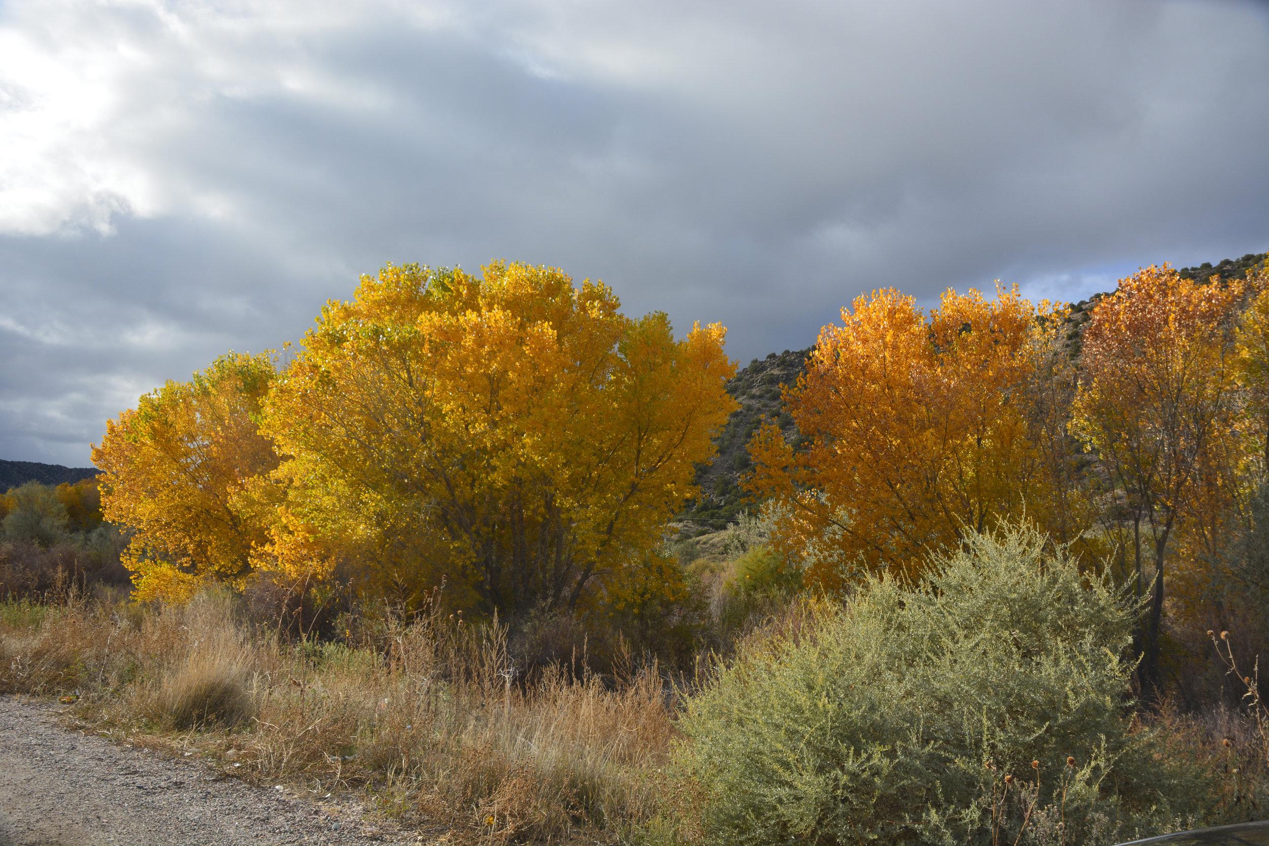 Taos color 2.jpg