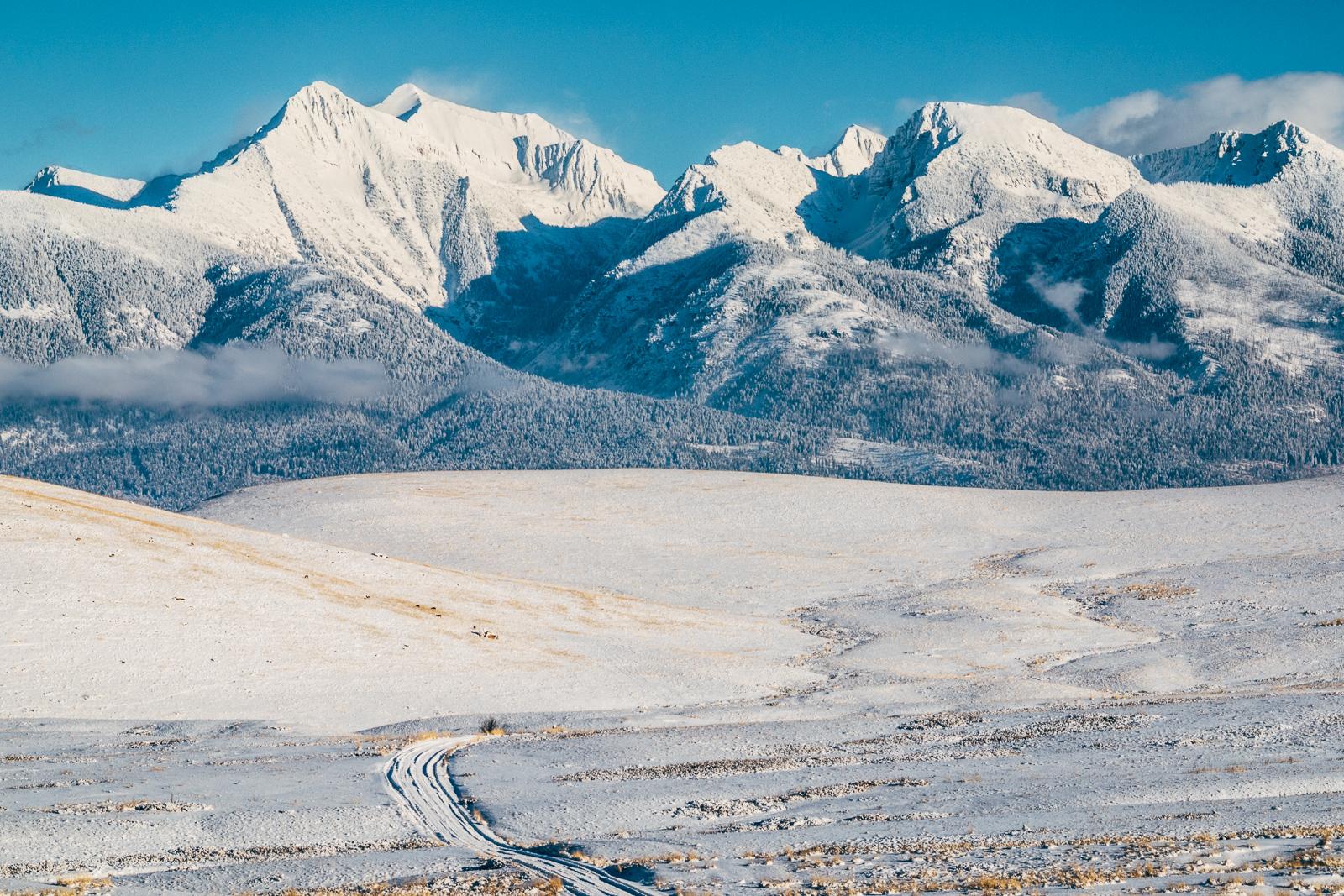 Mission Majesty    -  Mission Mountains, MT