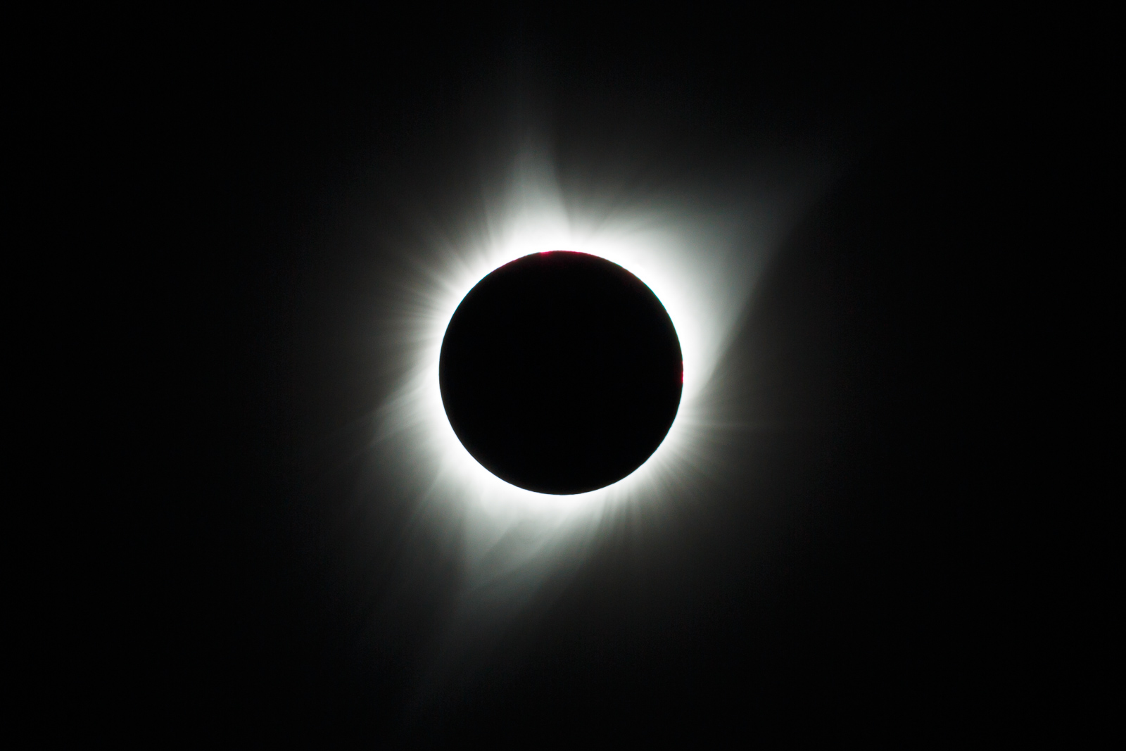 Eclipse (13x19)(8x10)