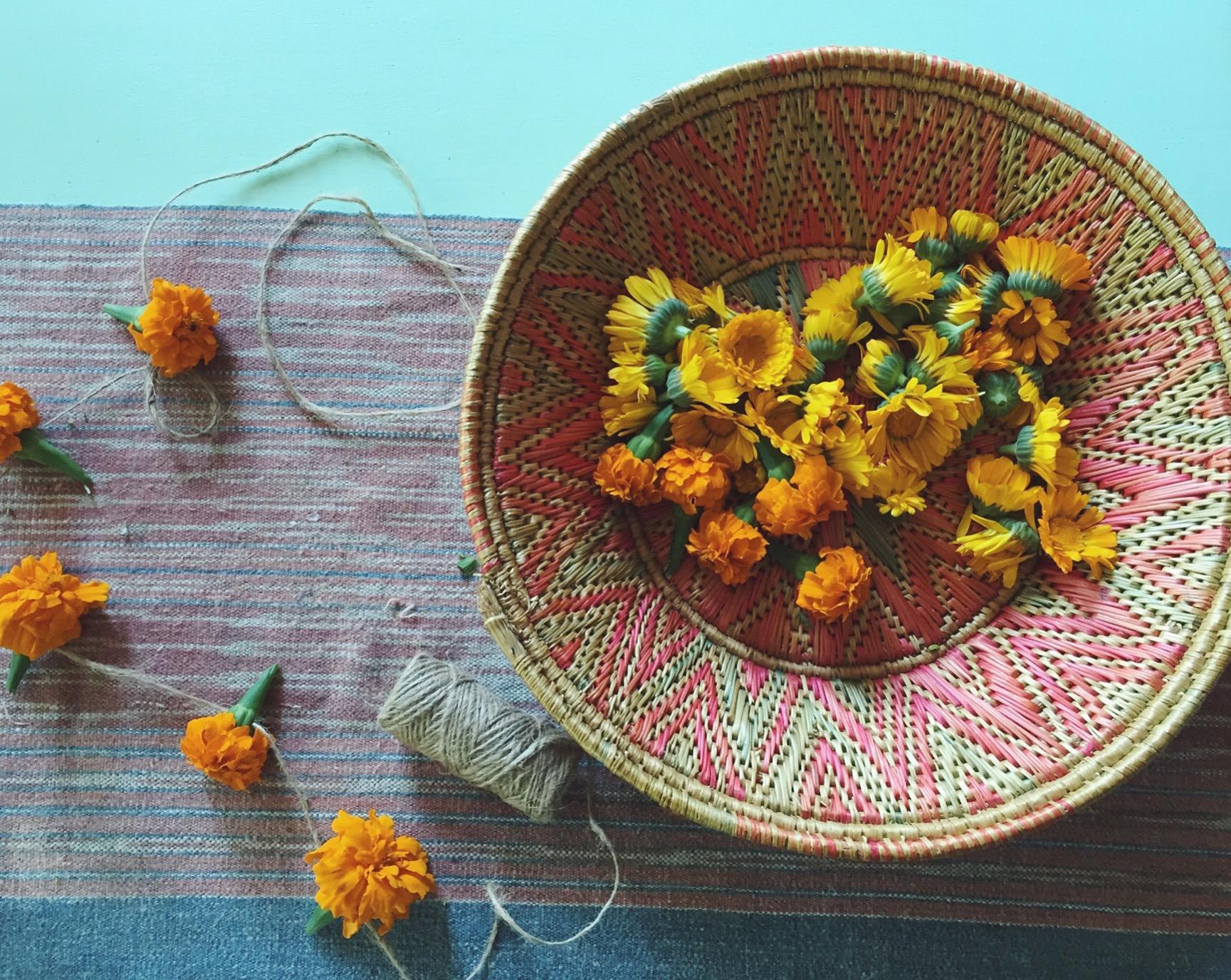 marigolds-sept.jpg