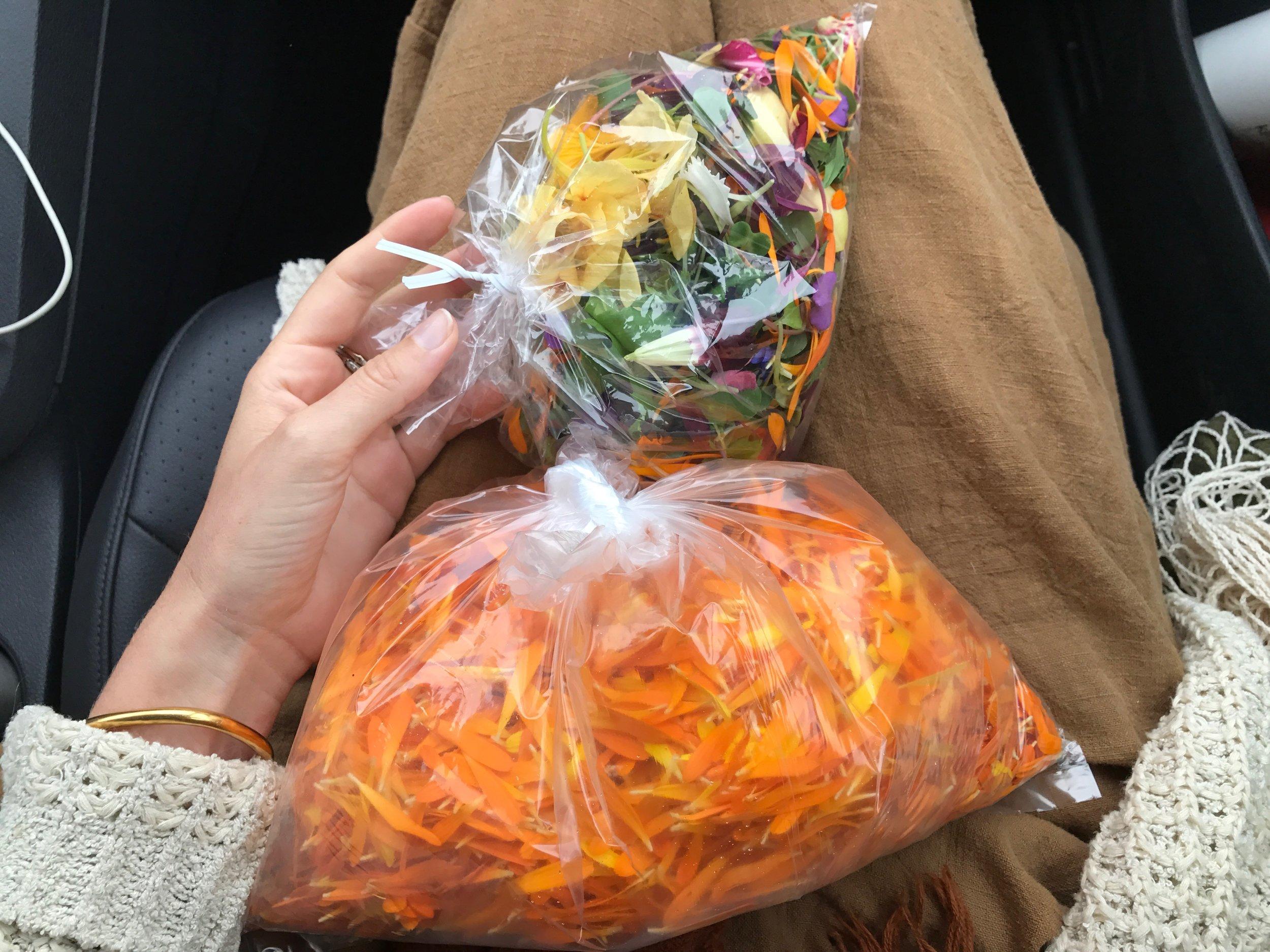 Edible Flowers, Earthworker Farm