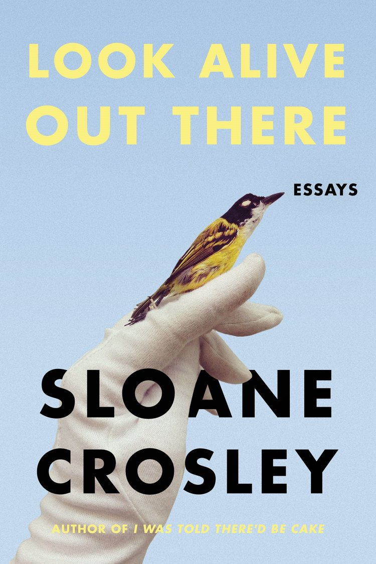 Sloane Crosley - Look Alive Out There / $15A witty, fun and comforting collection of essays, perfect for a cozy night in!