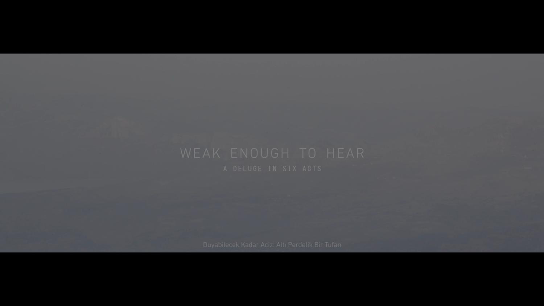 Video, 00:39 minutes, colour, English / Turkish.