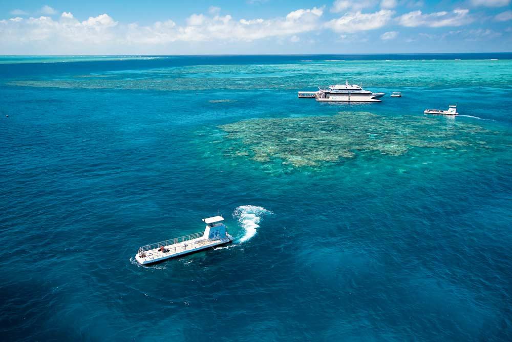 The-Reef_Great-Barrier-Reef-Fishing_TEQ.jpg
