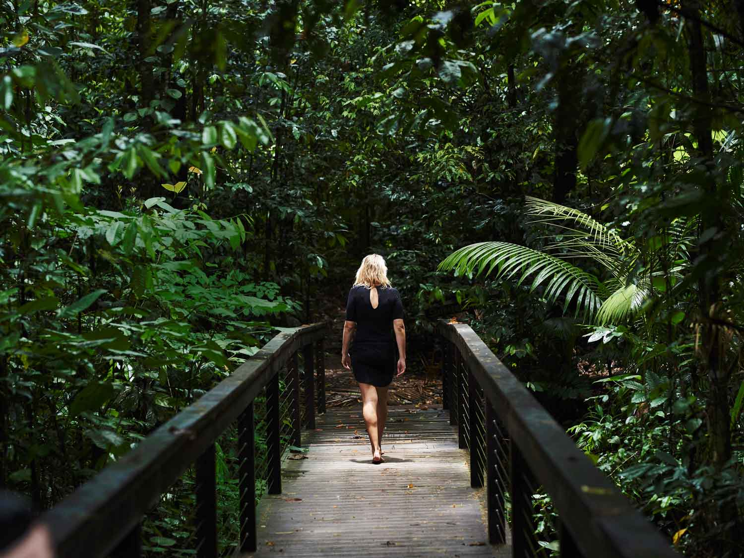 Daintree-Ecolodge_Lifestyle_Simon-Shiff_0-56_FULLSIZE-JPEG-300DPI-ADOBE-RGB-5MB.jpg