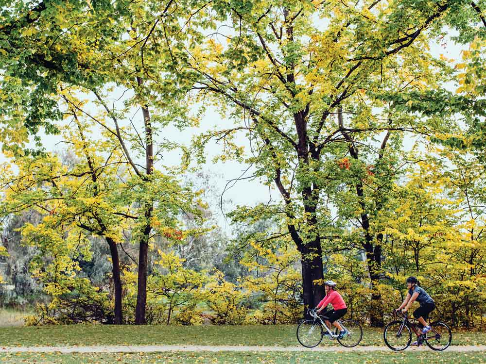 Bike-riding-along-Wagirra-Trail-at-Noreuil-Park-in-Albury--copy.jpg