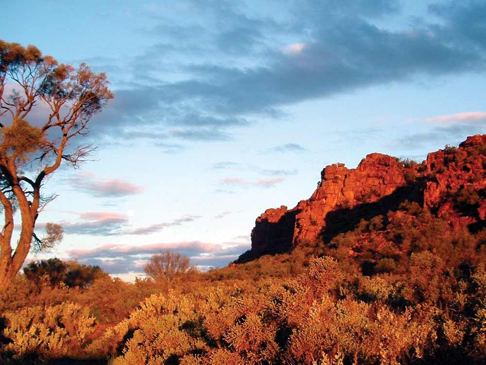 Whyalla-Wild-Dog-Hill.jpg
