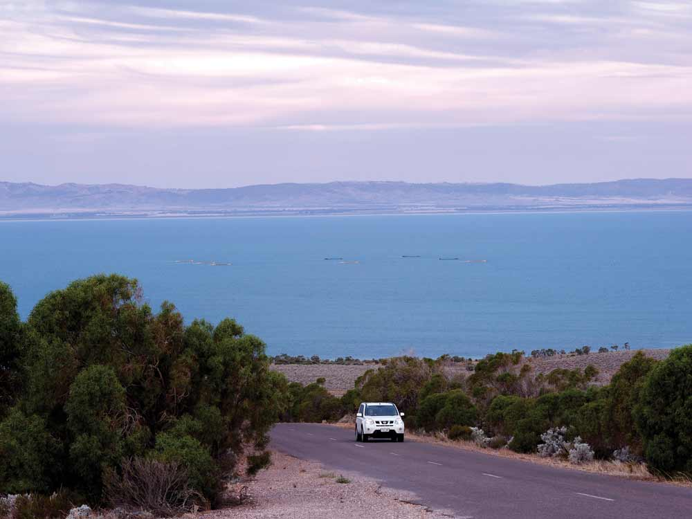 Whyalla-Fitzgerald-Bay-Road-4WD.jpg