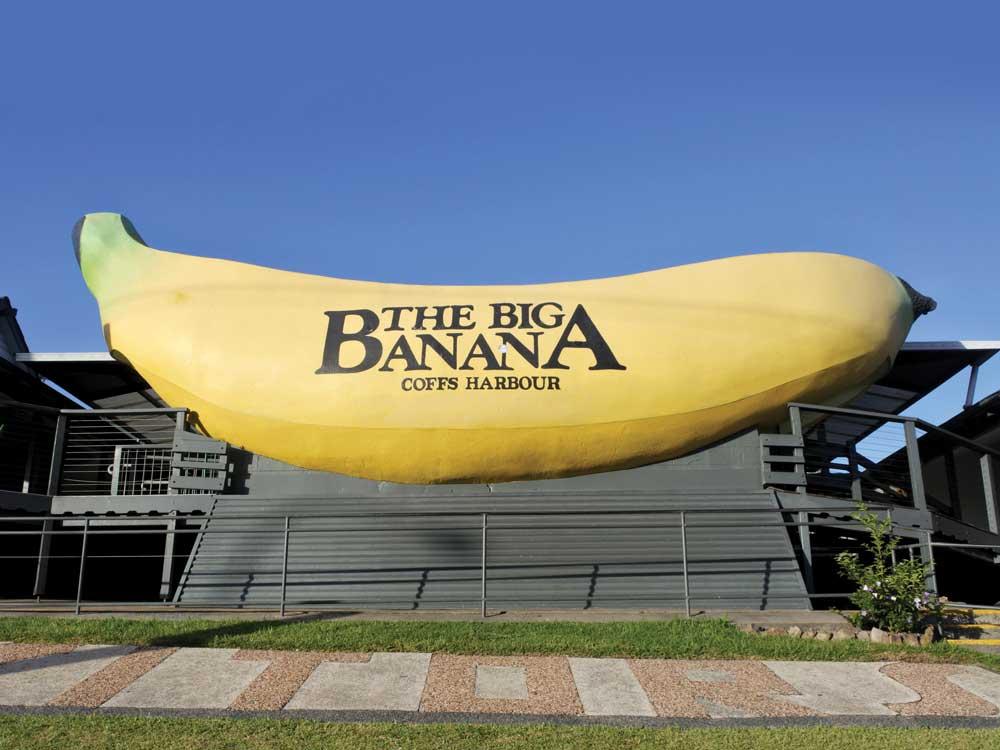 Big_Banana.jpg