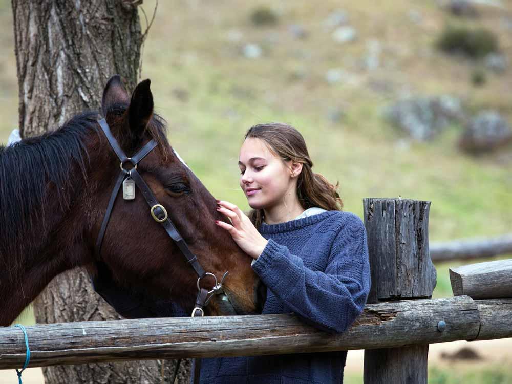 Turon_Teen_Horse.jpg
