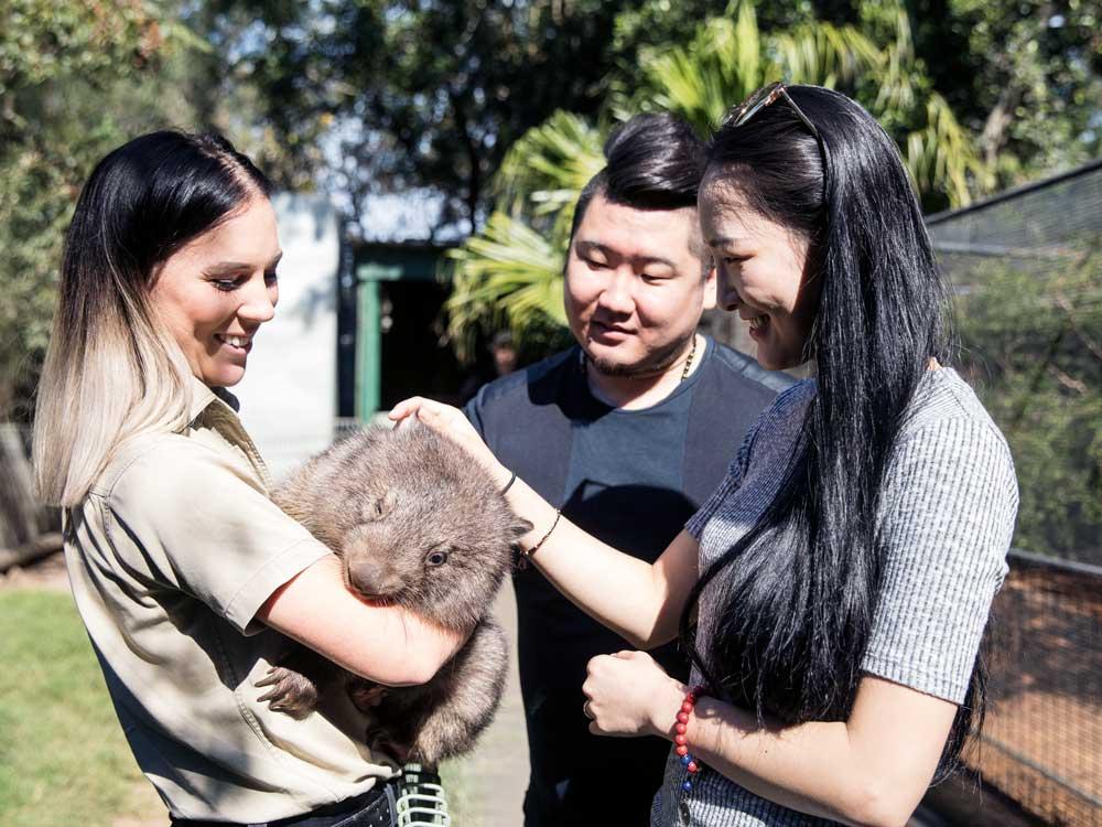 Featherdale-Wildlife-Park_Destination-NSW-(5).jpg