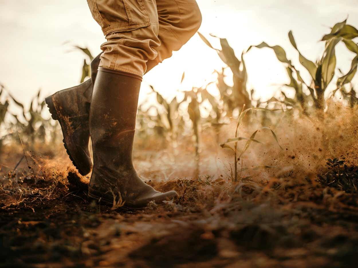 Boots_Drought.jpg