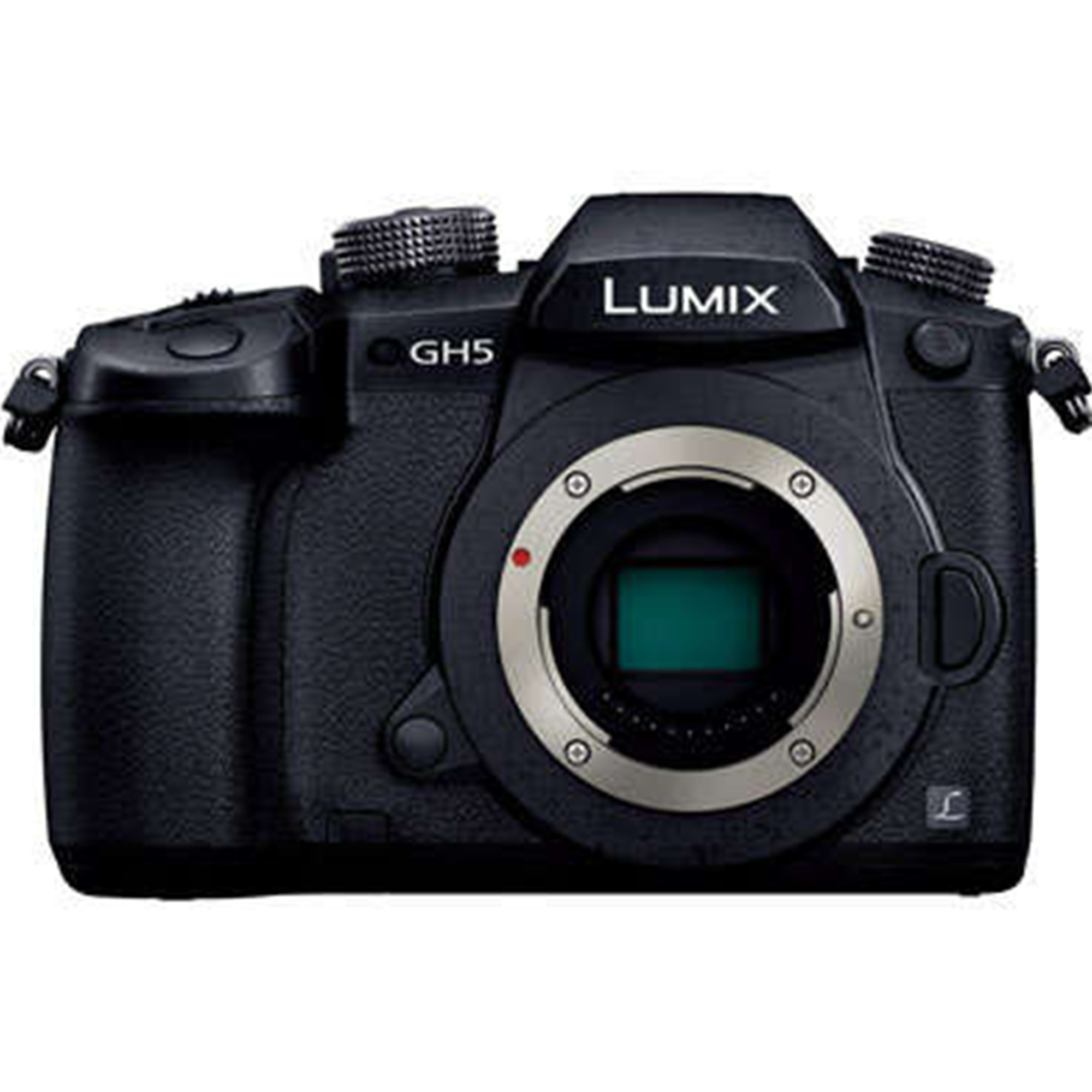 Panasonic Lumix DC-GH5 Mirrorless -