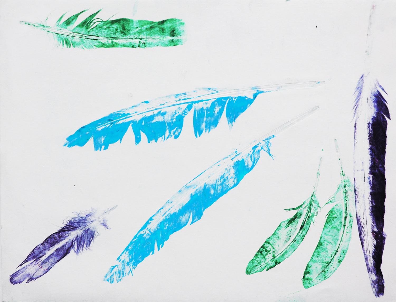 feathers 5.jpg