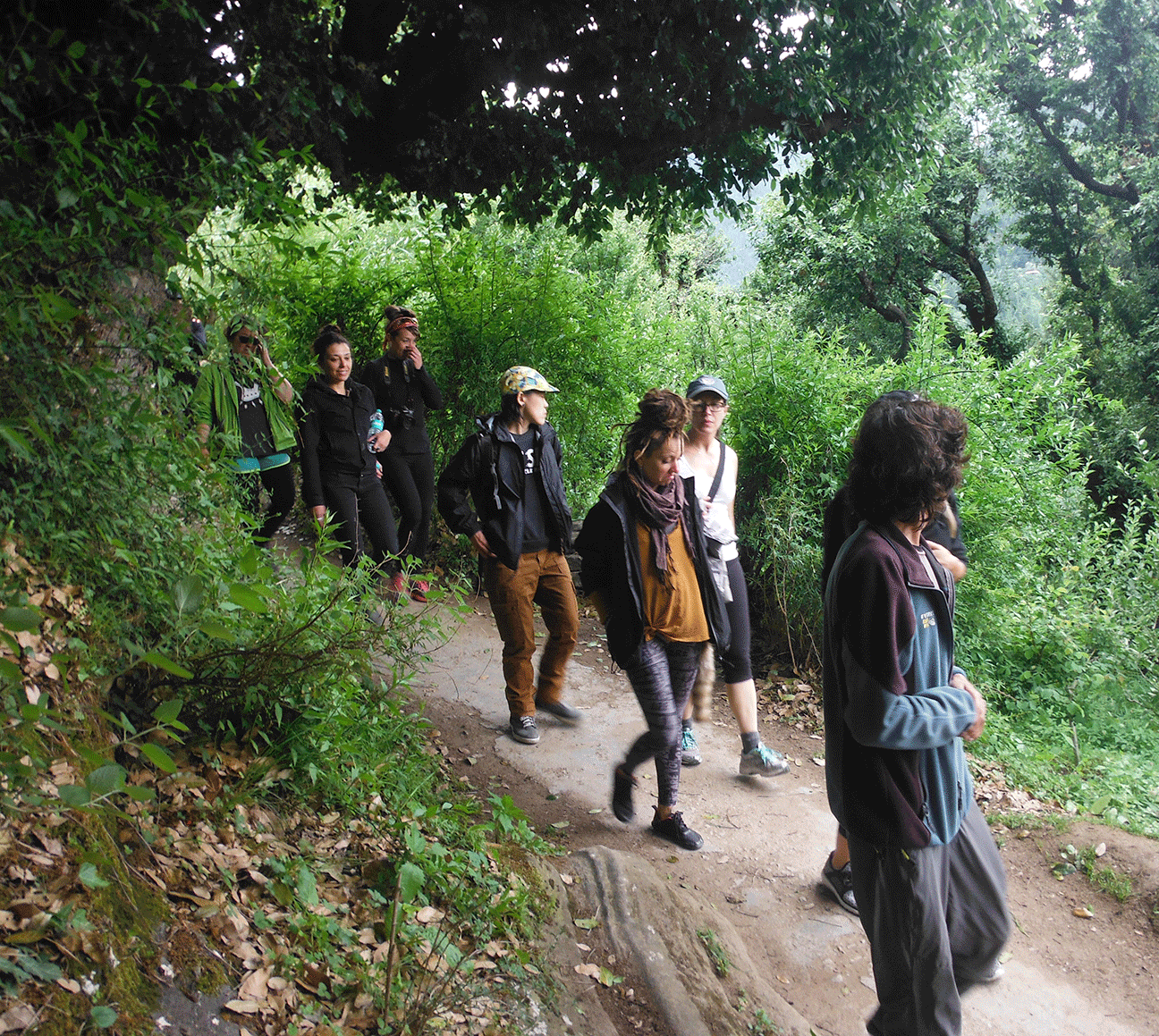 Visitors walking to Jogini Falls — a short trek from the homestay