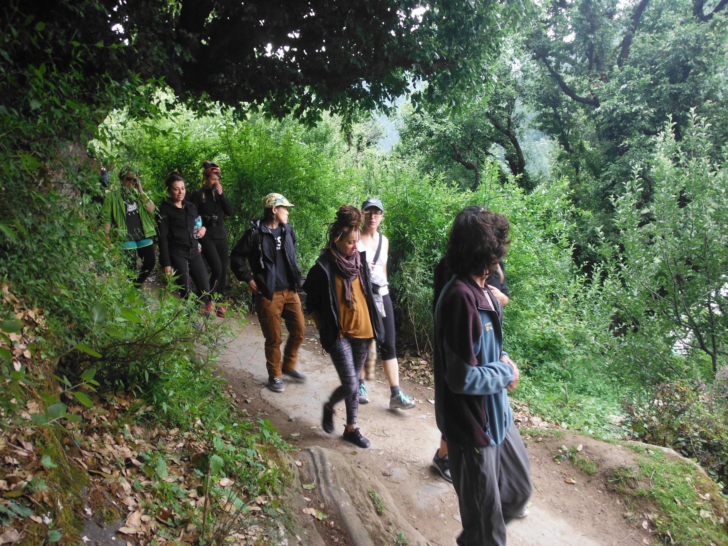 Copy of Yoga Group Trekking to Jogini Falls