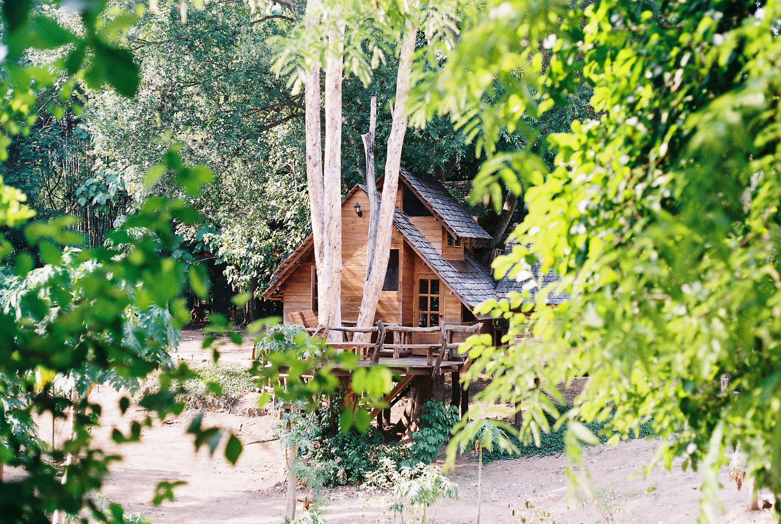 Staying in a treehouse - Chiang Mai, Thailand