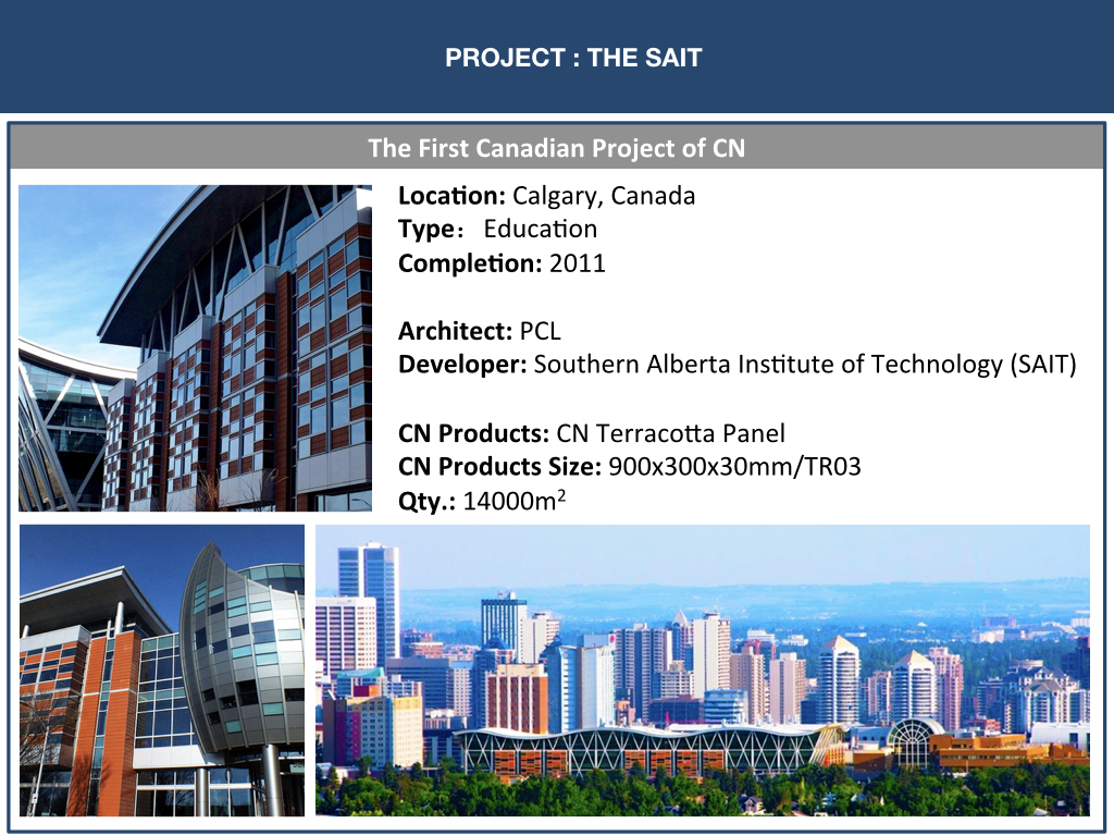 CNT PROJECTS PAGE FOR WEBSITE.005.jpeg