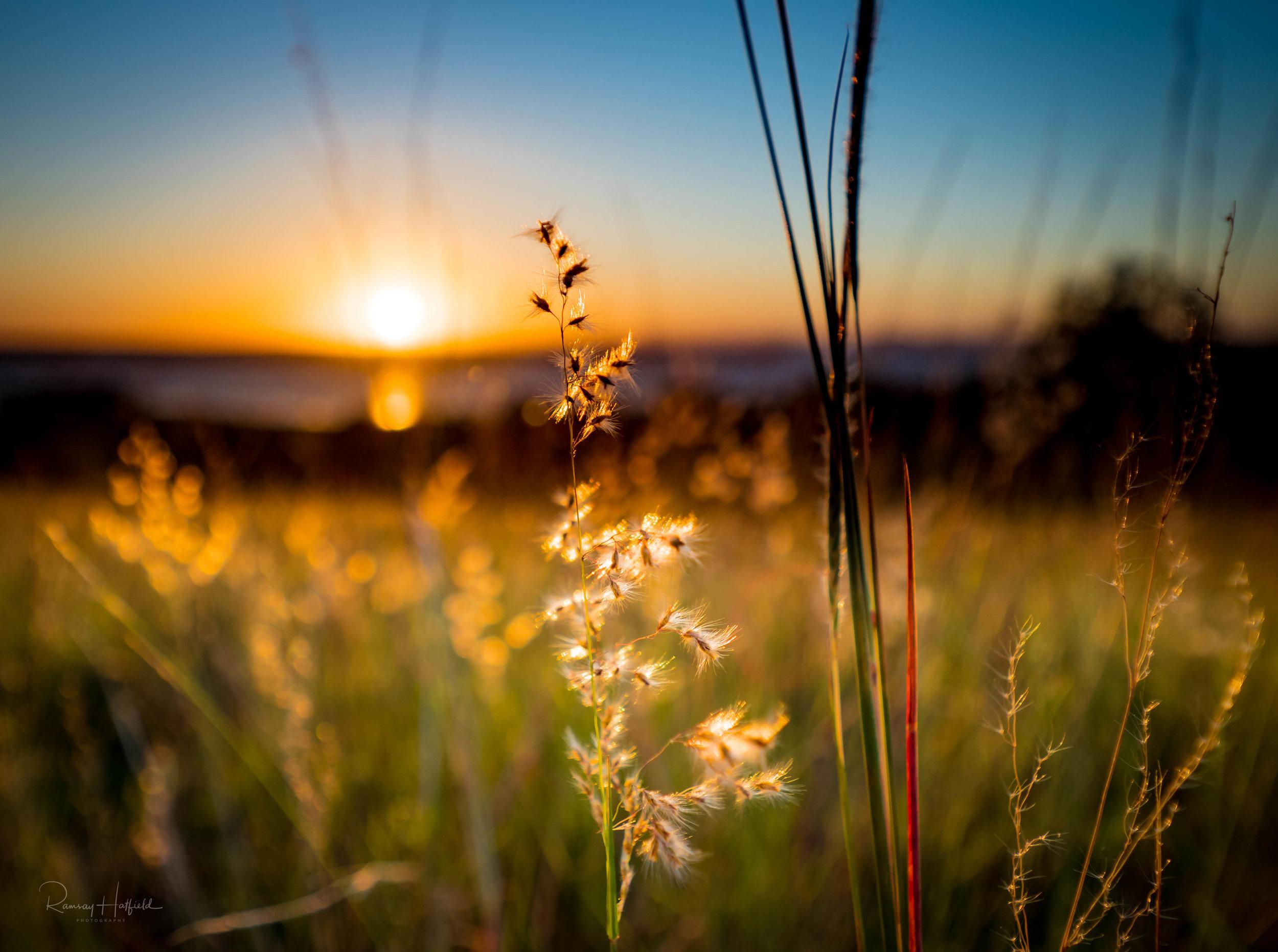 Australian Sunset.jpg