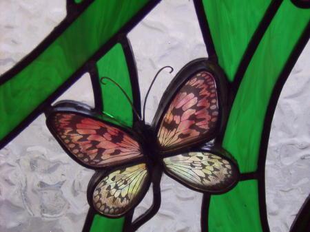 Butterflies 2-450x337.jpg
