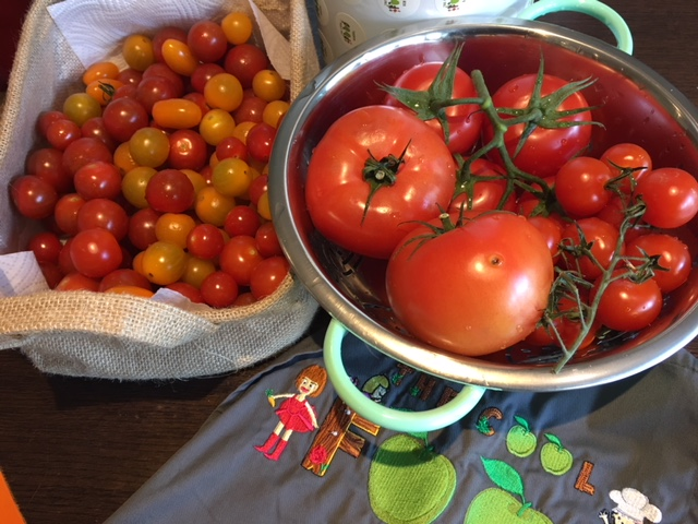 Top Tip - Always have a supply of home-made tomato sauce in the freezer!