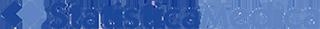 statisticamedica-logo.png