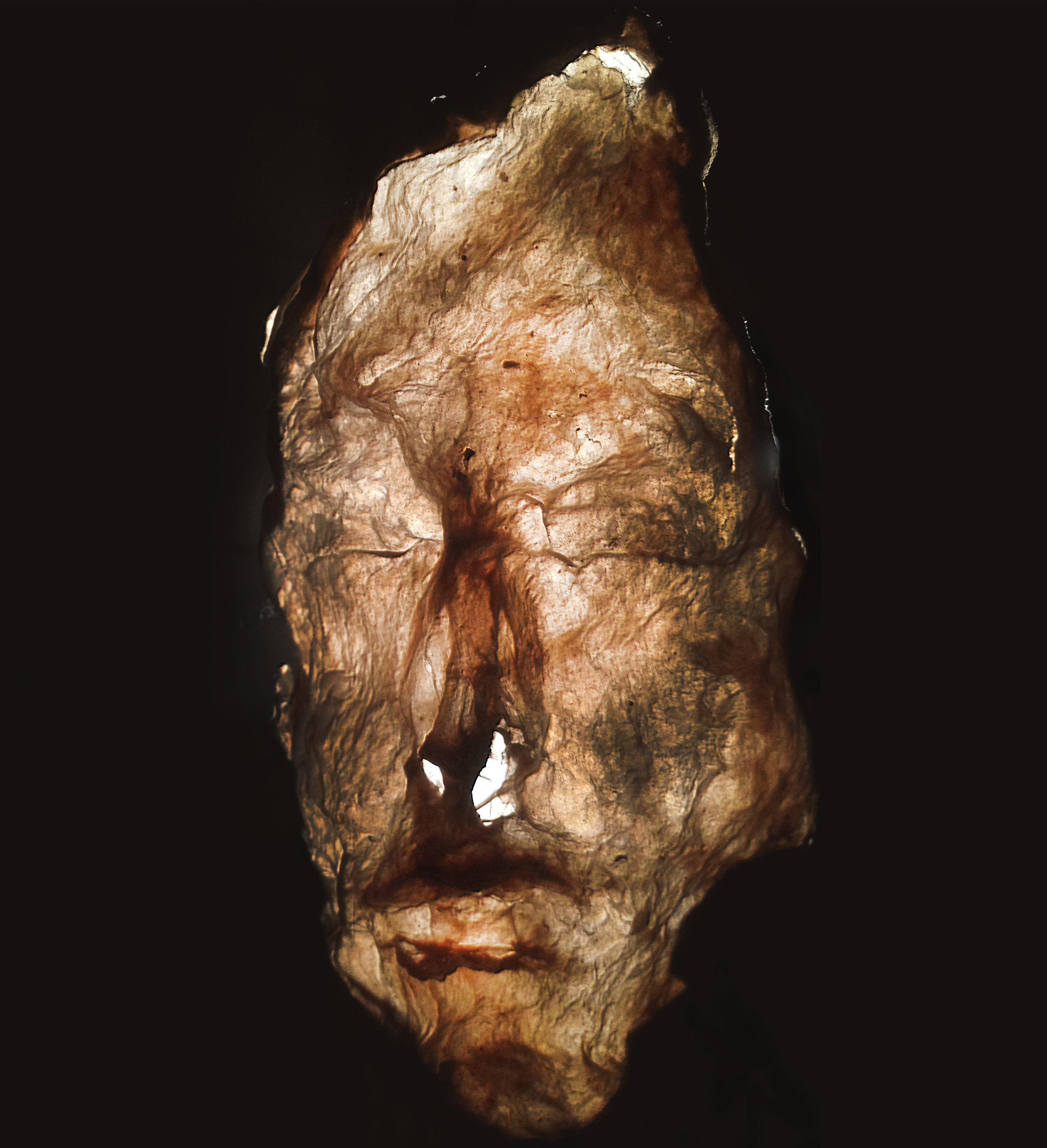 "e. Mask at Age 300 Cast abaca, 5""x4""x18"", 2010..jpg"