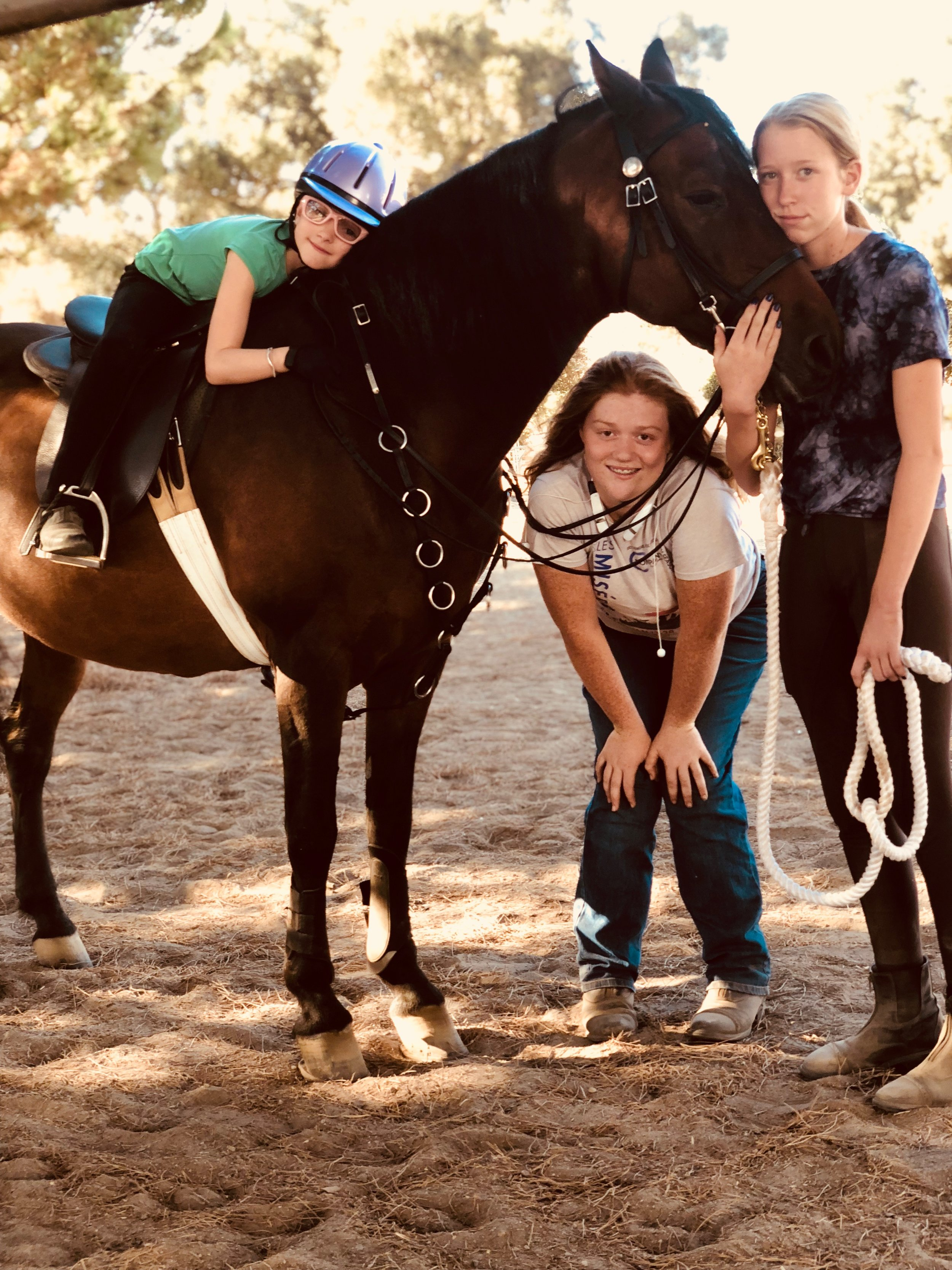 Win a week of Summer Horse Camp at Windsor Equestrian Center - Lakeside.