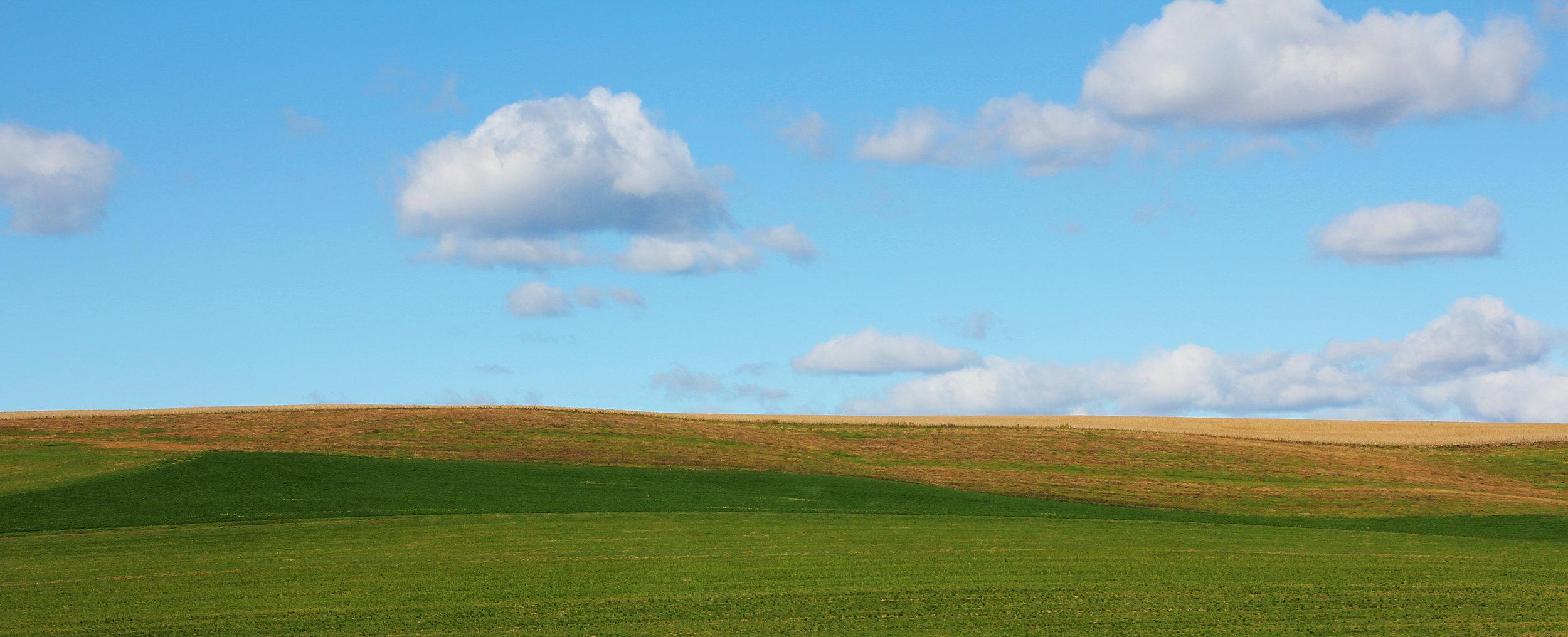 Maxatawny Landscape.jpg