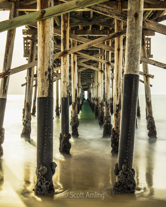 Under Balboa Pier