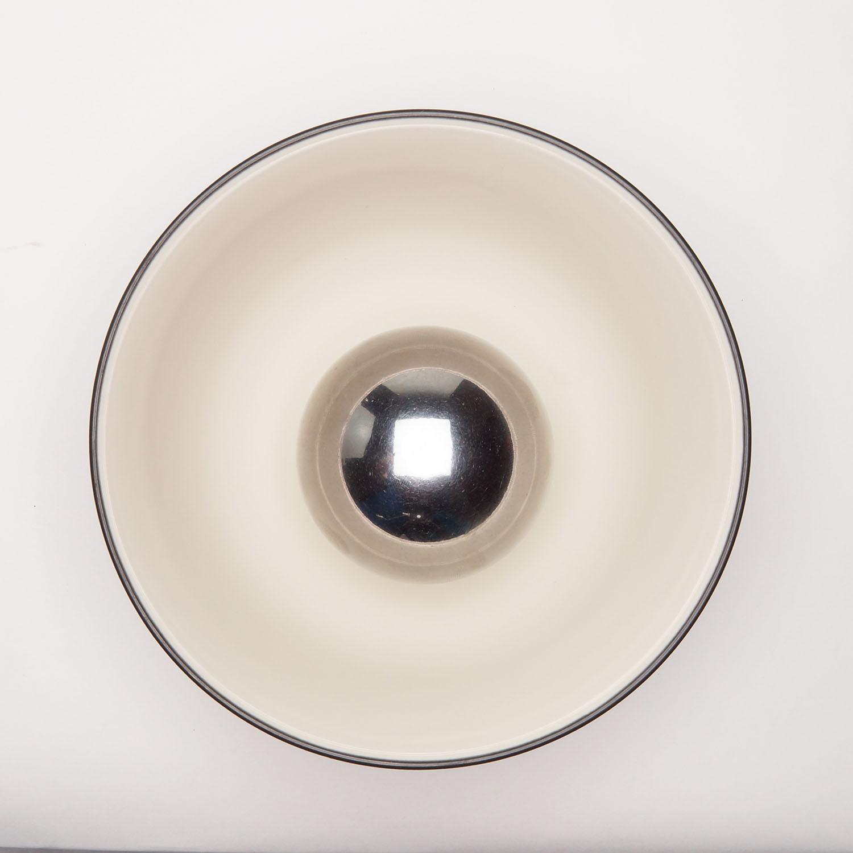 Clean Ball Bearing in Rice Bowl-Hero-V1.jpg