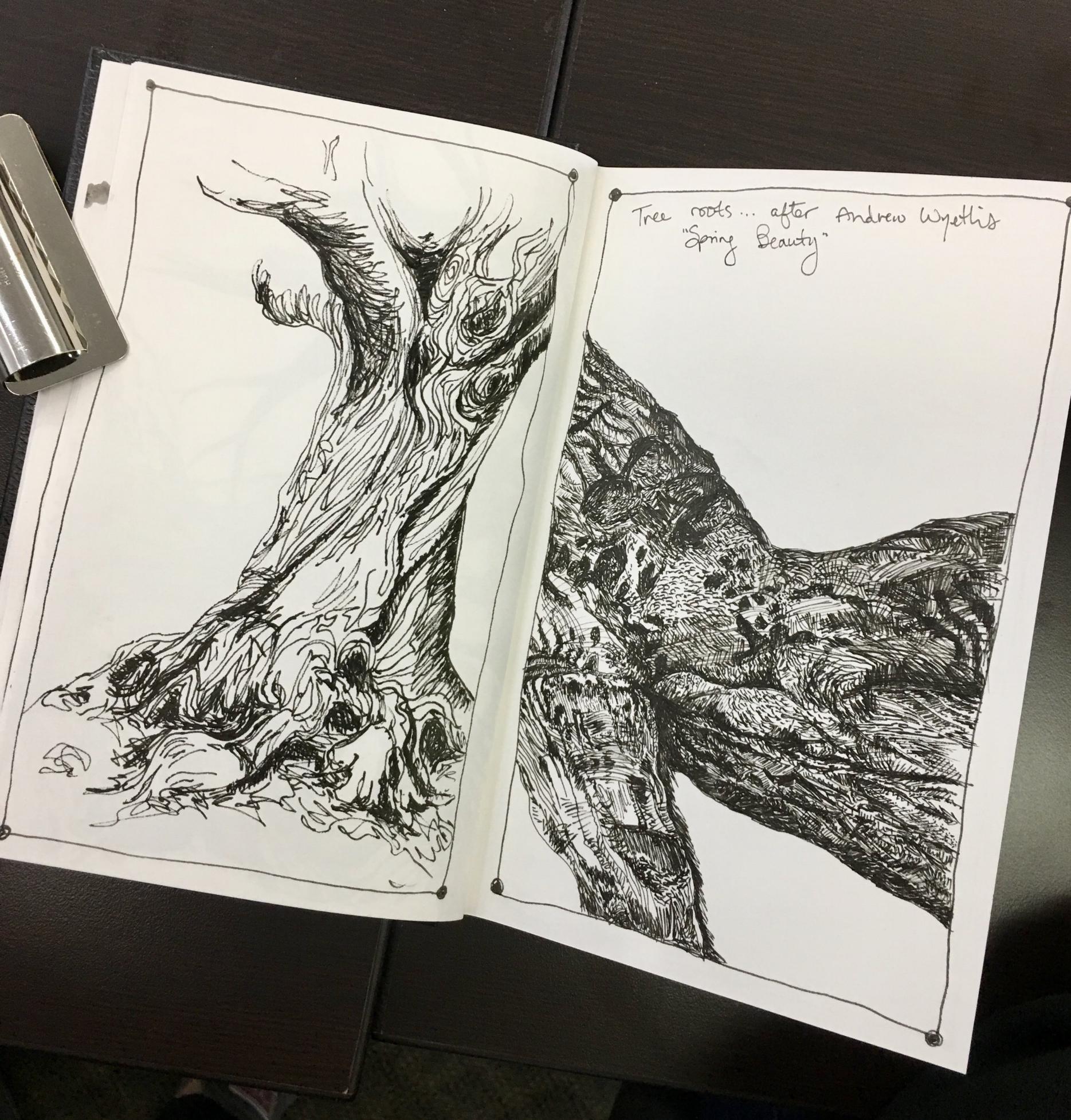 Sarah Crumb Sketching Nature