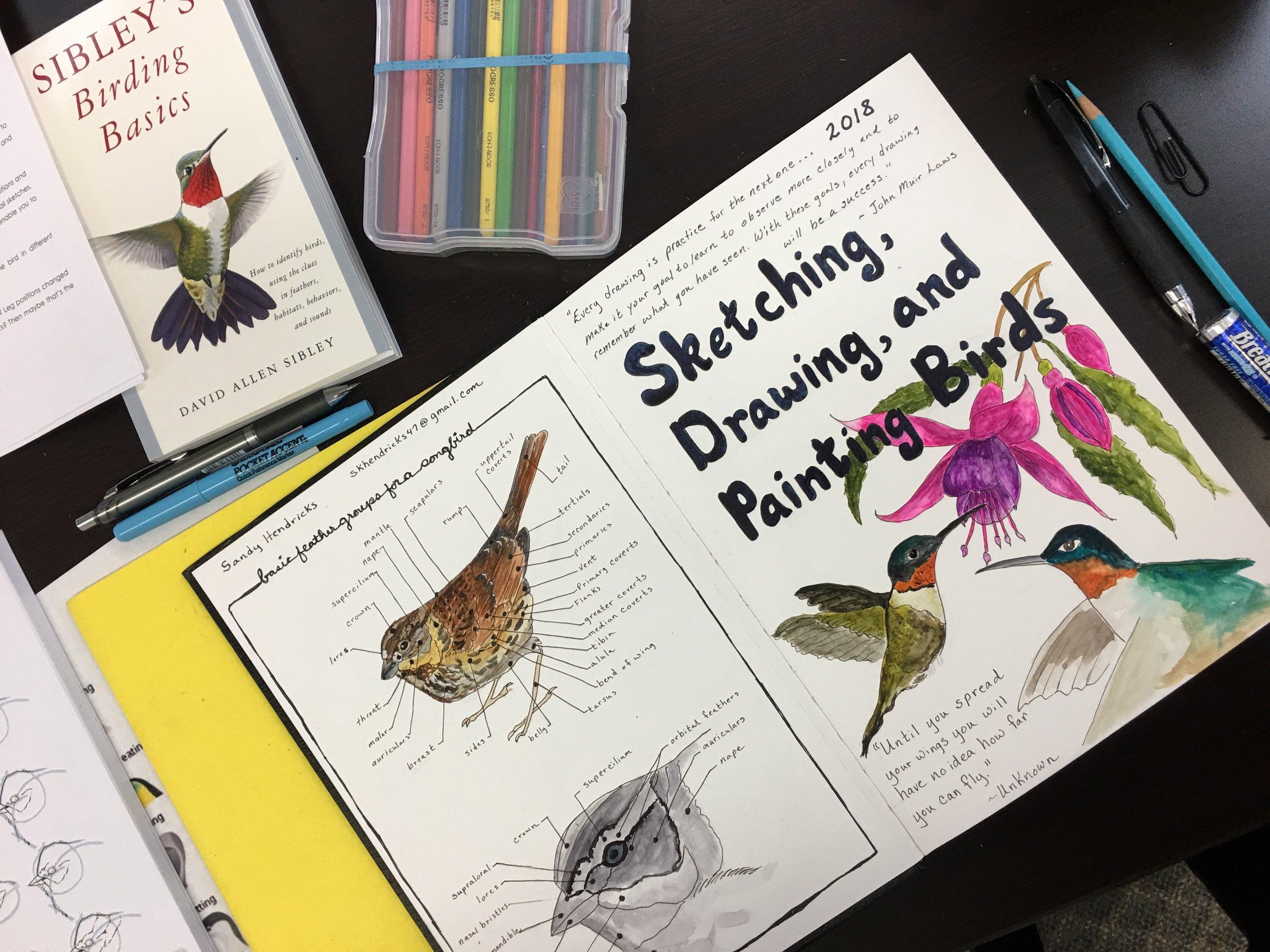 Sandy Hendricks sketchbook