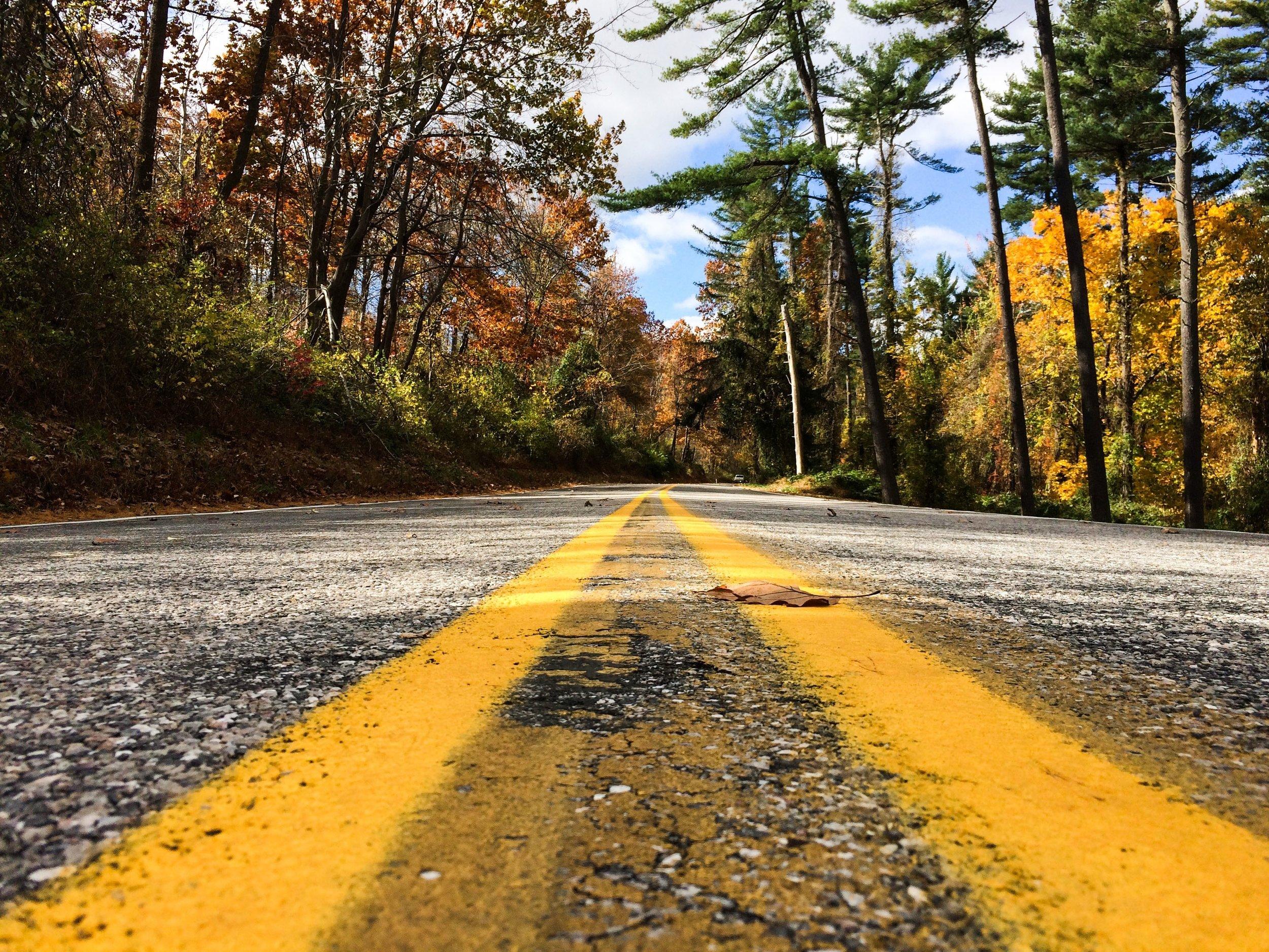 road-1030878.jpg